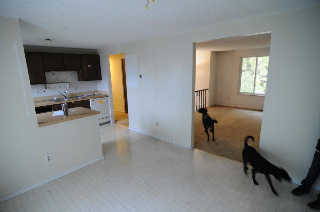 Kitchen. Wall will be taken out for more open concept. Brian's dogs are not included with the property :)